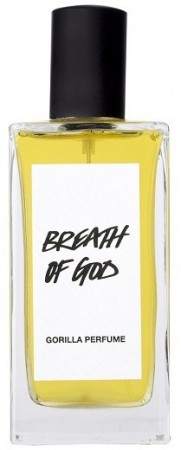 Breath of God (parfyme) 100ml